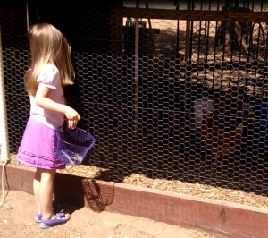 Saying hello to her chick and her brother's chick while she asks them for more feathers.
